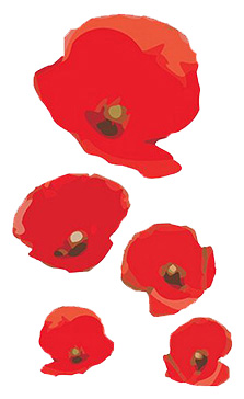 We Will Remember Them poppies