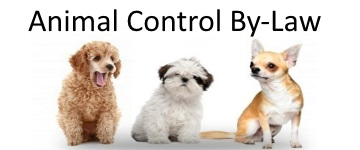 Animal Control By-Law
