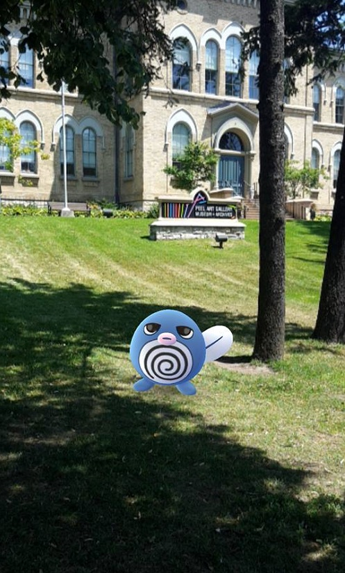 Pokemon on the front lawn at PAMA