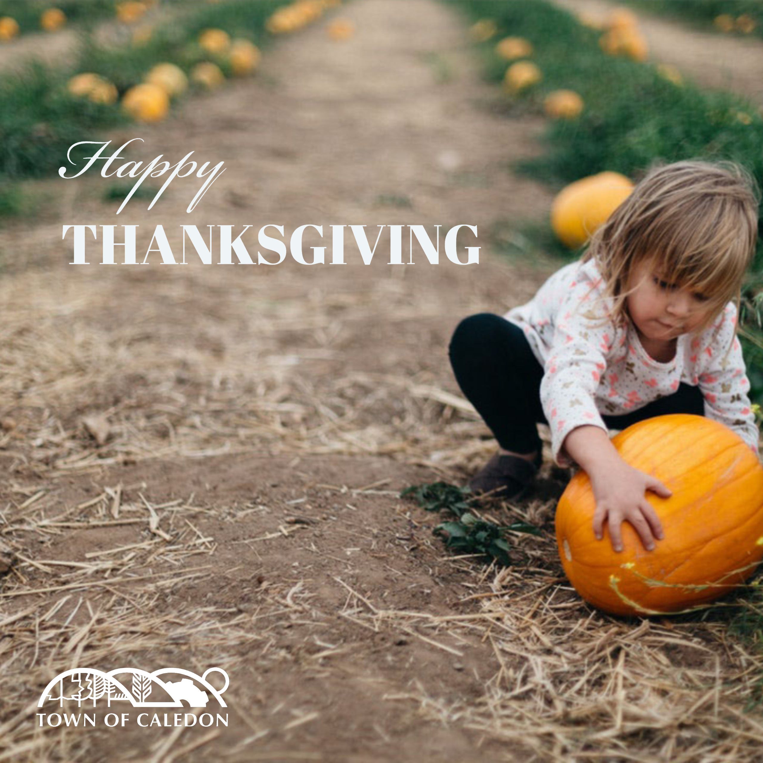 child with pumpkin
