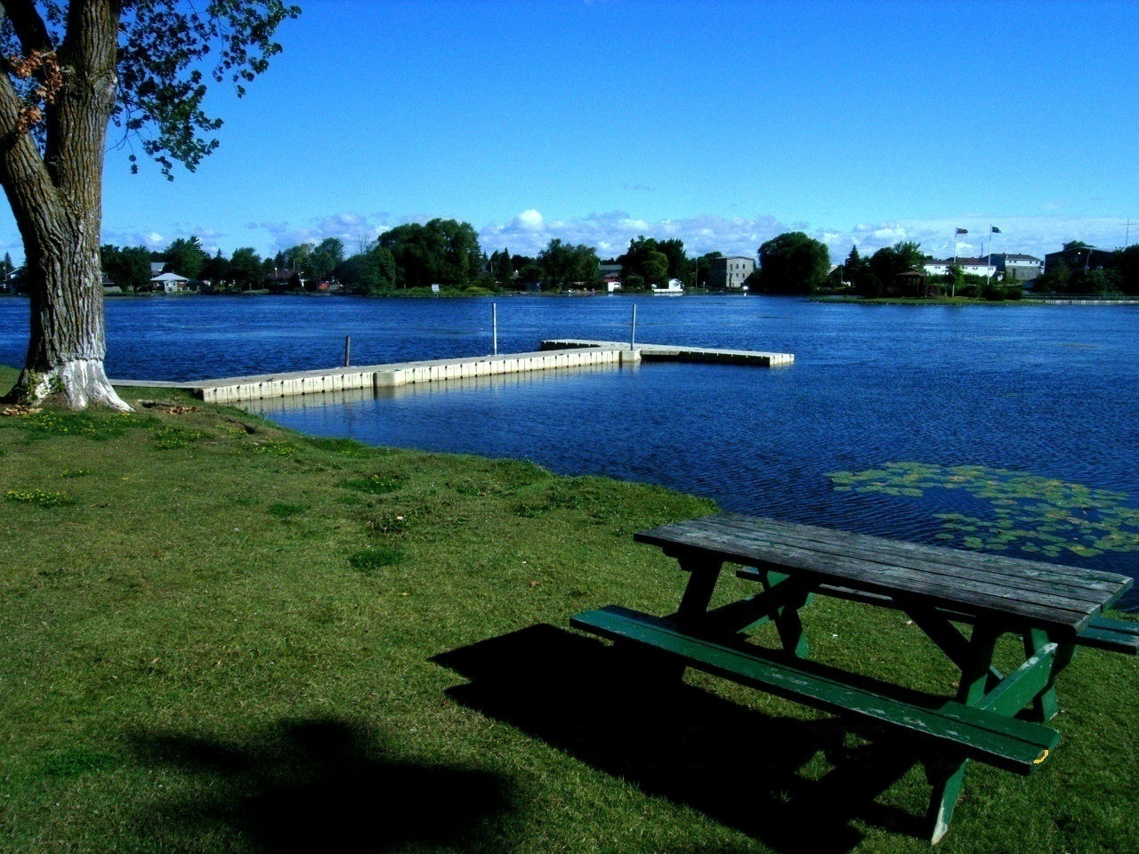 Picnic table overlooking Mill Pond